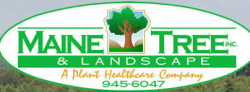 Maine Tree & Landscape logo
