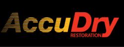 AccuDry Inc. logo
