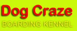 Dog Craze Boarding Kennel logo