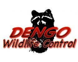 Dengo Wildlife Control logo
