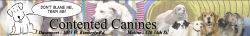 Contented Canines logo