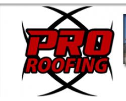 Pro Roofing logo