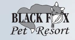 Black Fox Pet Resort logo