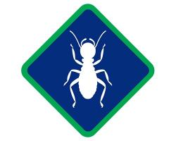 Affordable Termite Control logo