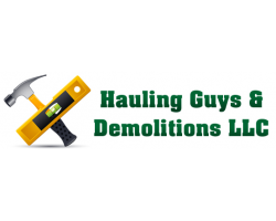 Hauling Guys & Demolition logo