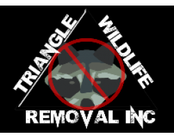 Triangle Wildlife Removal & Pest Control Inc logo