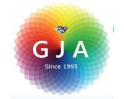 Gemsecure Jewlery Appraisals logo